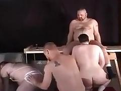 Bear Orgy scene 2