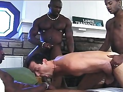 Luring white small fry has three hung ebony studs pounding his anal cleft